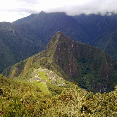 Южная Америка 2013-2014
