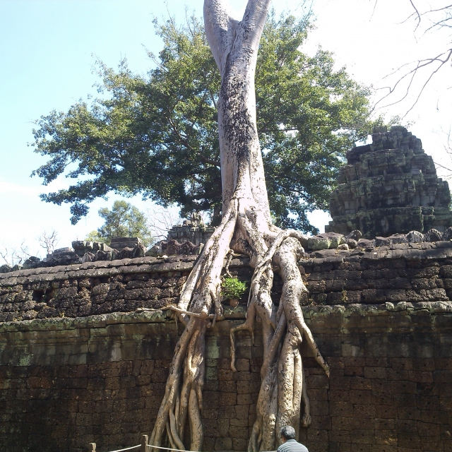 The holy city of Angkor